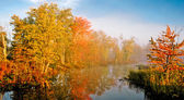 Autum colored trees reflecting on water — Foto Stock