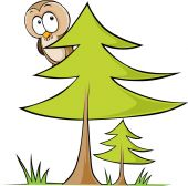 Owl sitting on tree - vector illustration isolated on white background — Stock Vector