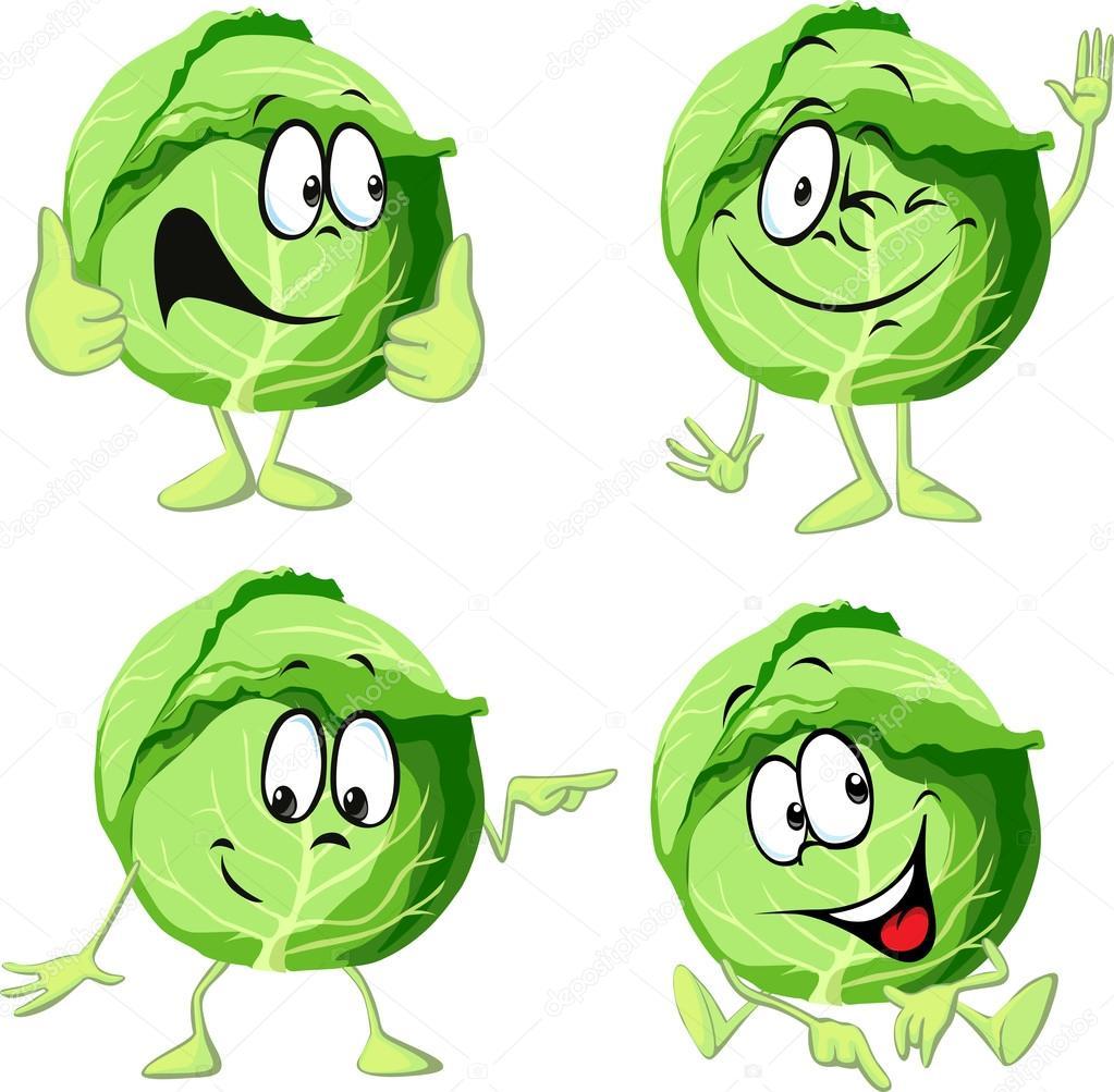 Dibujos animados de col verde aislado sobre fondo blanco