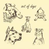 Vector hand drawn Set of dogs — Vettoriale Stock