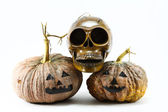 Human skulls and pumpkin on black background, Halloween day background. — Stockfoto