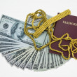 Banknotes and passport on white background, pocket money and prepare for travel. — Stock Photo #69162945