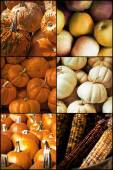 Autumn Seasonal Fruits Vegetables — Stock Photo
