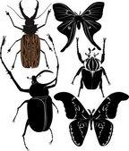 Butterflies and beetles — Stock Vector