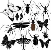 Silhouettes of  butterflies and  beetles — Stock Vector