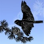 Silhouette of bird — Stock Vector #65348153