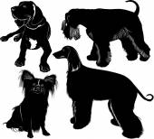 Silhouettes of three dogs — Vettoriale Stock