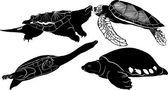 Four Reptilias silhouettes — Stock Vector
