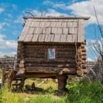 Hut on chicken legs — Stock Photo #57394473