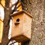 Nesting box — Stock Photo #70481761