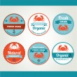 Set of seafood icons — Stock Vector #51994829