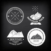 Set of expedition badges — Stockvector