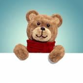 Teddy bear holding white card — Stock Photo