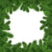 Green fir tree frame — Foto de Stock