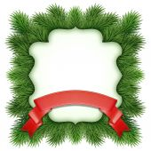 Новогодняя рамка Зеленая ель дерево — Стоковое фото