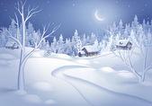 зимний ночной пейзаж — Стоковое фото