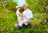 Grandson playing with grandpa, pulling the braces, spring garden — Stock Photo