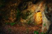 Secret stone cave in dark forest — Stock Photo