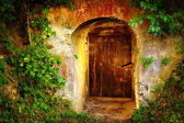 Old entrance door in forest. Wine cellar — Stock Photo