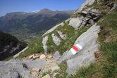 Alpine hiking trail — Stock Photo