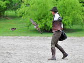 Falconer swings a lure for a Peregrine falcon — Stock Photo