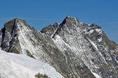 Swiss Alps beautiful view — Stock Photo