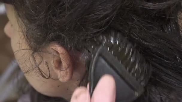 Woman colors her hair at home. Coloring gray hair close-up ...