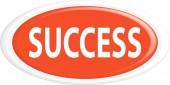 Button success — Stock Vector