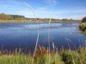 Sturgeon River through St. Albert, Alberta — Stock Photo