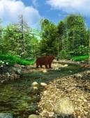 Bruin grizzly beren — Stockfoto