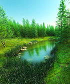 Lost lake in the forest — Stockfoto