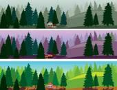 Fir forest three banners, fog, dawn, day — Stock Vector