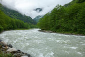 Firtina River in Northern Turkey — Stock Photo
