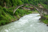 Senyuva Bridge over the Firtina river — Stock Photo