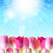 Beautiful Pink Tulips Against Shiny Sky Vector Illustration — ストックベクタ