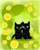 Black Cats and yellow Flowers — Stock Photo