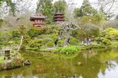 Japanese Tea Garden, San Francisco — Stock Photo