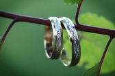 Wediing rings — Stock Photo