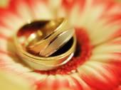 Wedding still life — Stock Photo