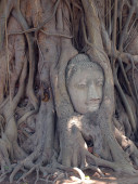 仏の顔. — ストック写真