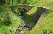 A small medieval stone bridge over the stream — Stock Photo