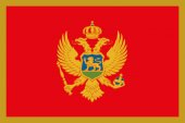 The flag of Montenegro — Stock Vector