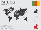 Set of Infographic Elements for the Country of Cameroon — Stockvector