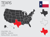 Set of Infographic Elements for the State of Texas — Stok fotoğraf