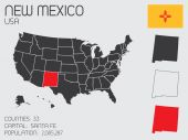 Set of Infographic Elements for the State of New Mexico — Stock Vector