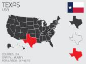 Set of Infographic Elements for the State of Texas — Stok Vektör