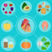 Infographics of food for helpful for healthy heart  — Stock Vector