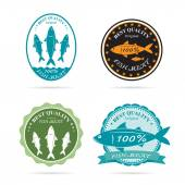 Set of vector an fish label on white background — Stock Vector