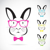 Vector image of a rabbits wear glasses  — ストックベクタ