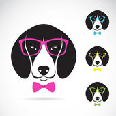 Vector images of dog beagle wearing glasses on white background. — Stock Vector